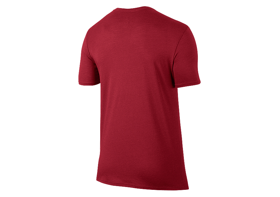 3789666d5f9 NIKE AIR JORDAN JSW ICONIC WINGS LOGO TEE GYM RED for 2157.50 ...